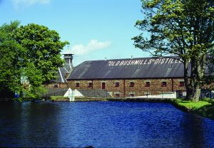 Irish Whiskey Trail Bushmills Distillery Bushmills 10 Year Old Single Malt Irish Whiskey Green Bushmills