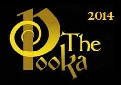 2014 Irish Whiskey Trail Irish Whiskey Pub of the Year Award Golden Pooka Award Winner Irish Whiskey Pub of the Year Dick Macks Pub Dingle
