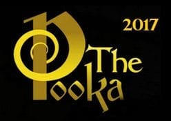 2017 Irish Whiskey Trail Irish Whiskey Pub of the Year Award Golden Pooka Award Winner Irish Whiskey Pub of the Year Sonny Molloys Whiskey Pub Galway