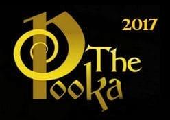 2017 Irish Whiskey Trail Irish Whiskey Pub Of The Year Award Golden Pooka Award Winner Irish Whiskey Pub Of The Year Sonny Molloys Whiskey Pub Galway