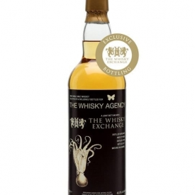 Whisky Agency Irish Malt 1989 / 27 Year Old for TWE